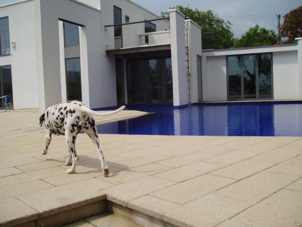 苏塞克斯令人惊叹的蓝色户外游泳池